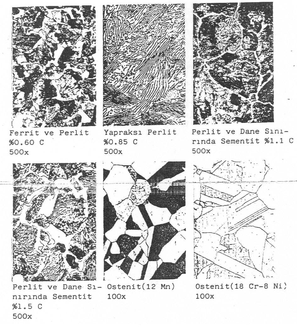 celigin ic yapısı2